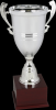 Click this Image to visit the Silver Cup Trophies category.